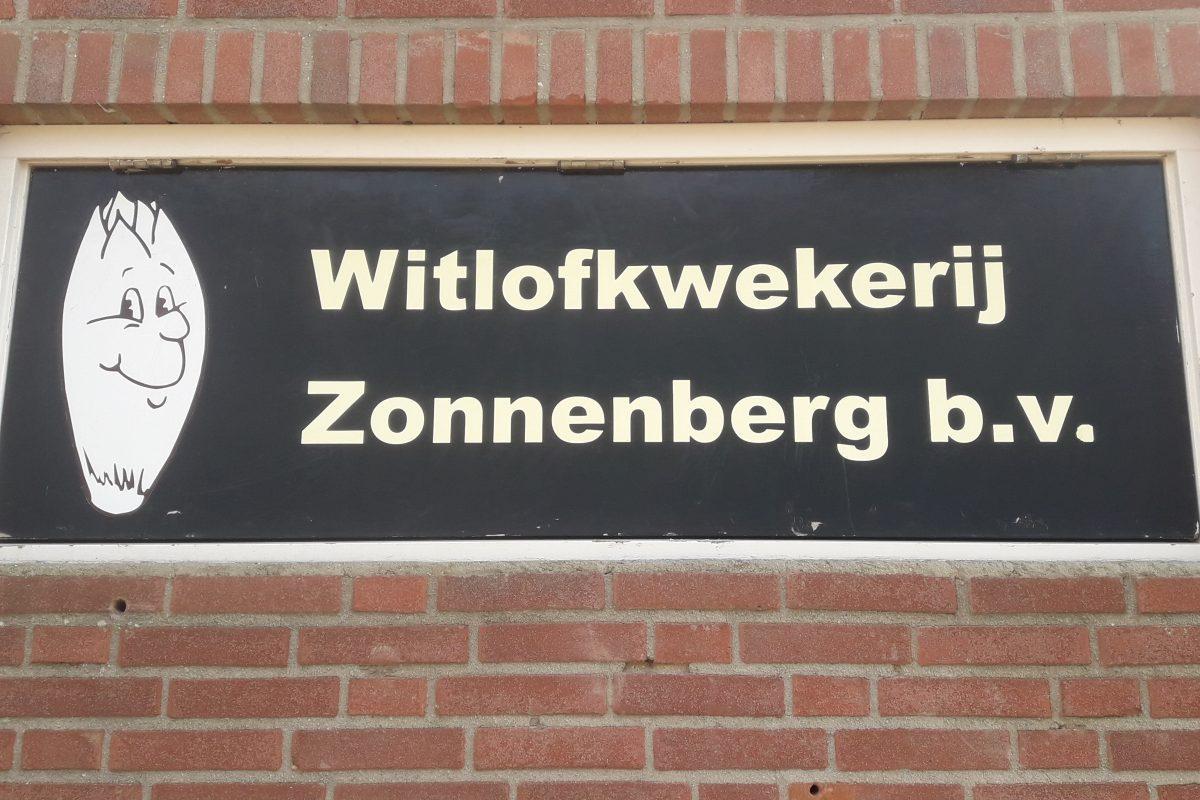Witlofkwekerij Zonnenberg te Zeeland / 600 zonnepanelen